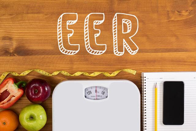 1日に必要なカロリー かんたん計算ツール