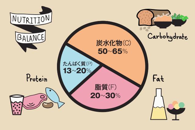 たんぱく質13~20% 脂質20~30% 炭水化物50~65%