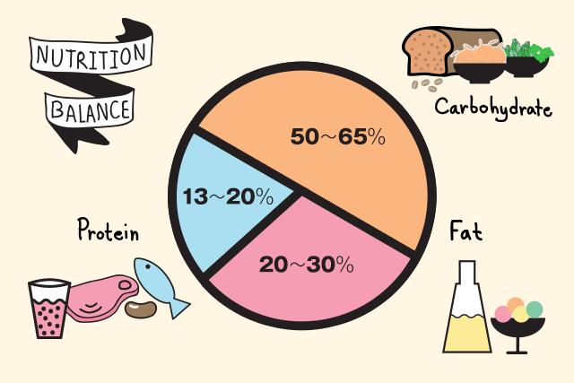 たんぱく質:13~20%/脂質:20~30%/炭水化物:50~65%